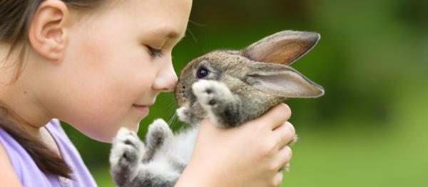 Little girl cuddling rabbit